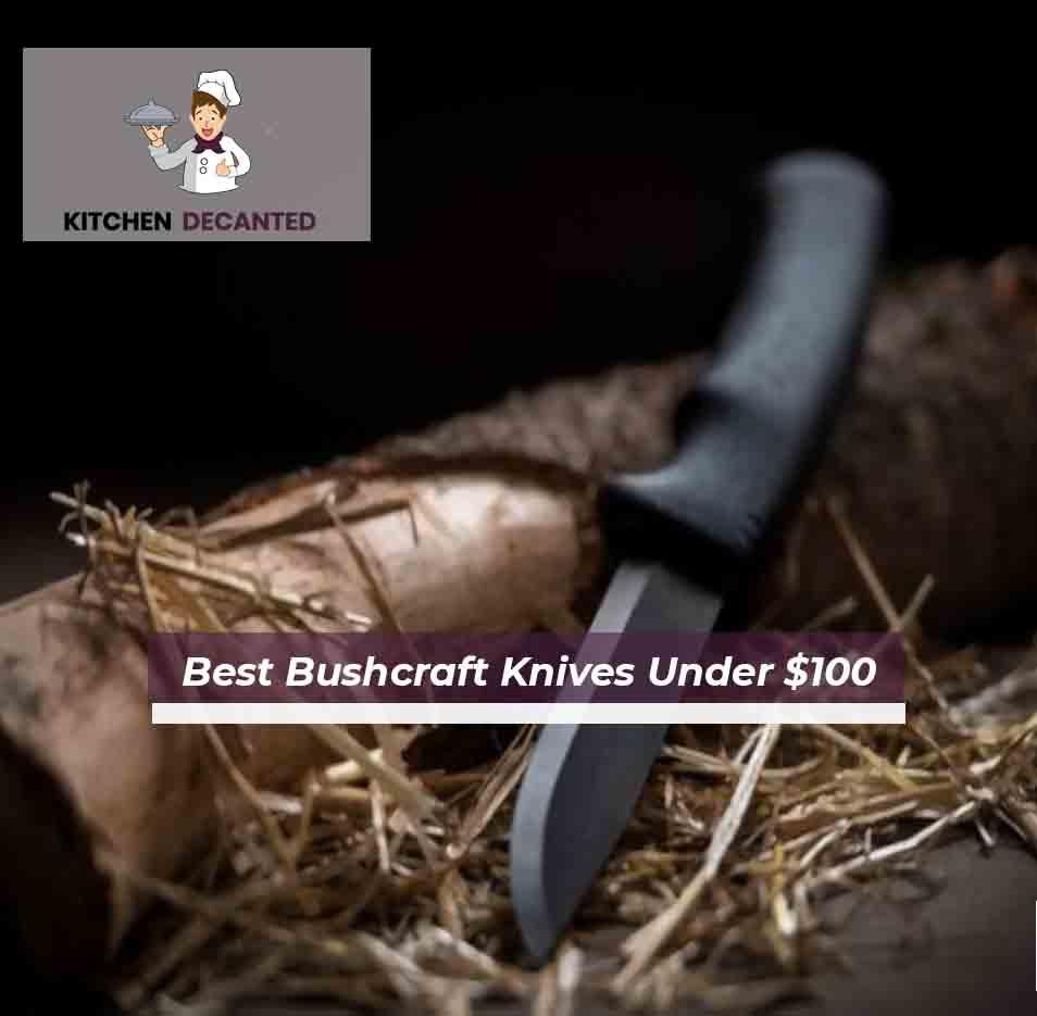 Best Bushcraft Knives Under $100